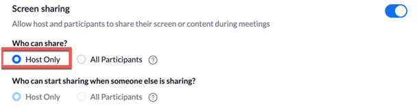 Image showing the option to allow other participants to share their screen